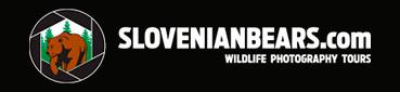 slovenian_bears-logo-white3